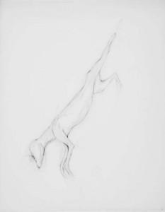 Untitled (GF-25), 2009